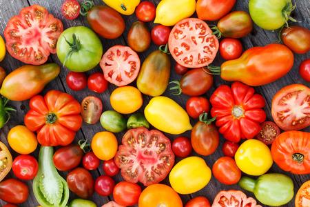 Bunte Tomaten Standard-Bild