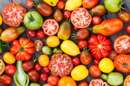 jitomates: tomates coloridos Foto de archivo
