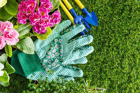 garden bench: spring flowers