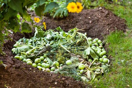 Biorresiduos para la tierra de compost