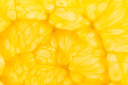 감귤류의 과일: citrus fruits background 스톡 사진