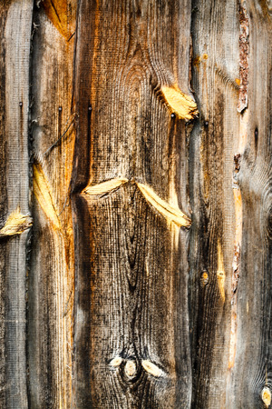 blemished: wood texture