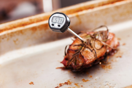 temperature controller: Meat thermometer in the meat