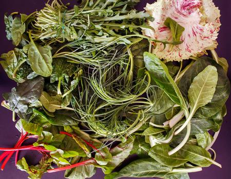salad greens: mixed salad greens Stock Photo