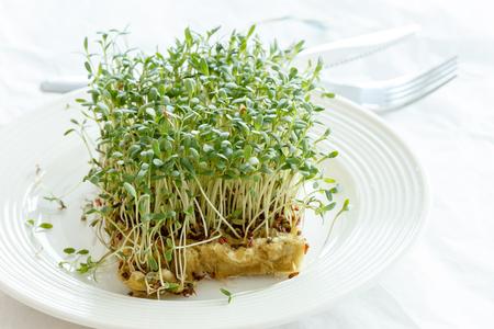 watercress: Fresh green watercress  on plate Stock Photo