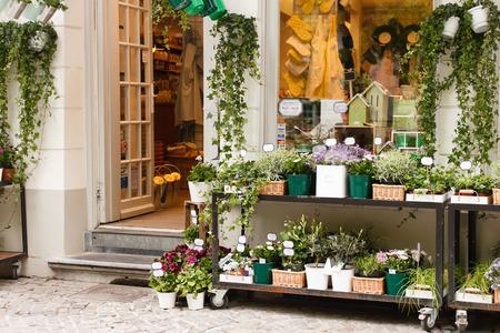 flower shop: flower shop outdoor