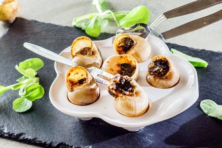comida gourmet: snails as gourmet food