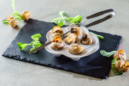 snails: snails as gourmet food