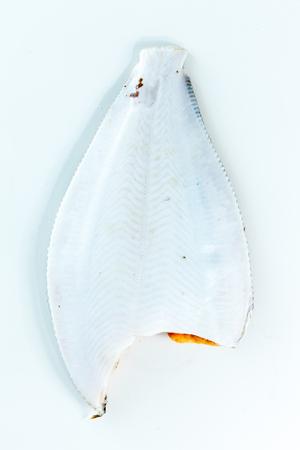 plaice: flounder fish
