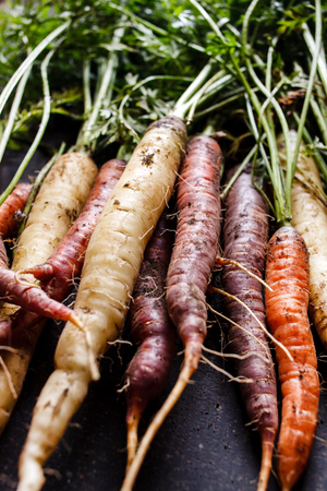 the godfather: organic carrots