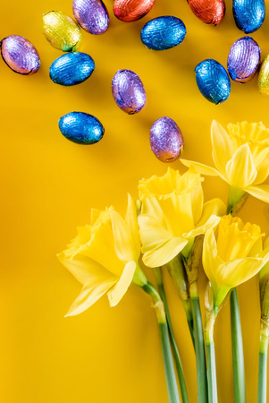 chocolate eggs: yellow narcissus and chocolate eggs