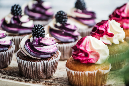 sugarcraft: berry cupcakes