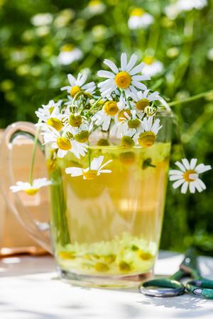 chamomile tea: chamomile tea