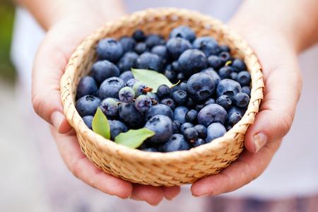 fresh blueberries Stok Fotoğraf