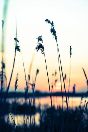 lake sunset: sunset over lake