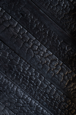 encaustic: black wood background