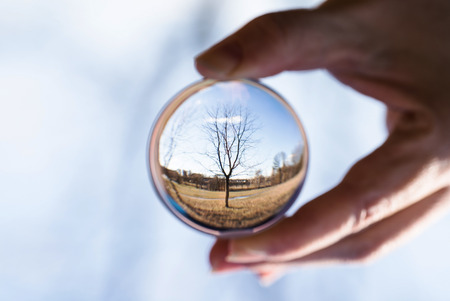 ball: nature in Crystal Ball Stock Photo