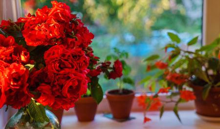 red roses in the vase Archivio Fotografico - 128519182