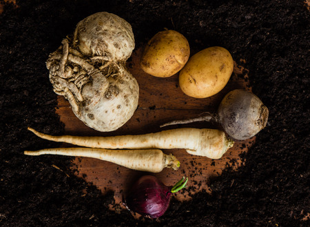 dark red: raw vegetables Stock Photo