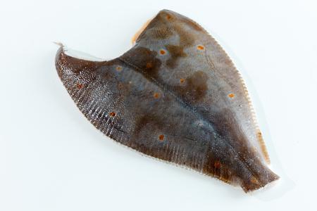 poissons olivaceus