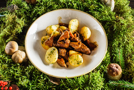 elk meat with potatoes Stock Photo