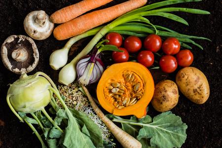 verse biologische groenten Stockfoto