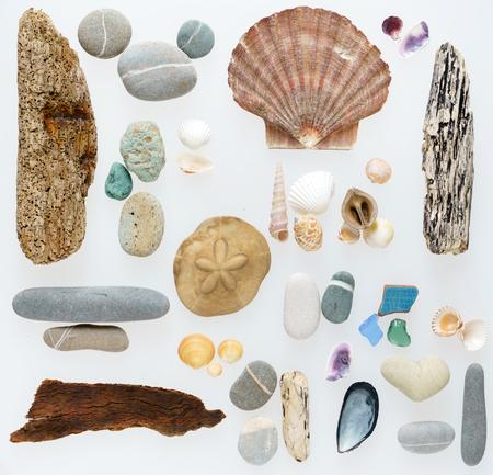 Zee collectie