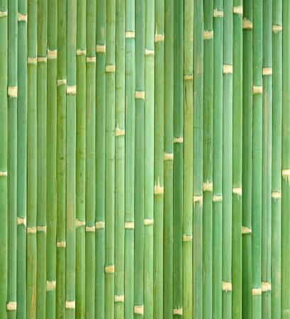 竹テクスチャ