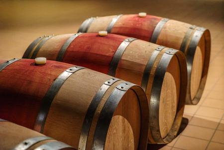 wine barrels Фото со стока