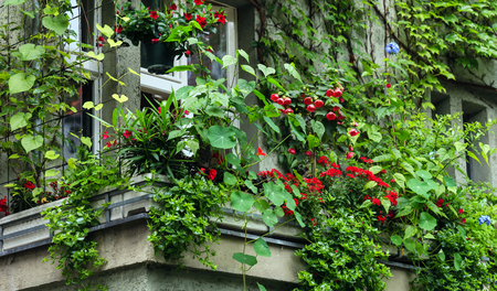 balcony with flowers 版權商用圖片