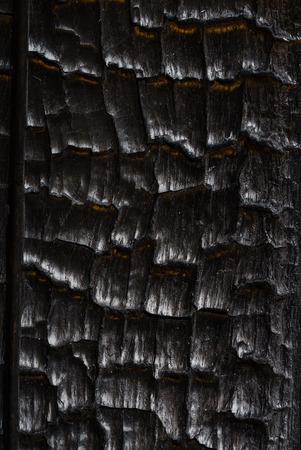 焦げた木のテクスチャ 写真素材