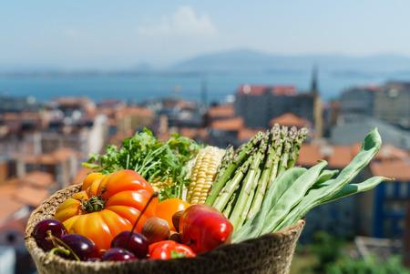 かごの中の新鮮な野菜 写真素材