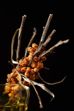 dried buckthorn