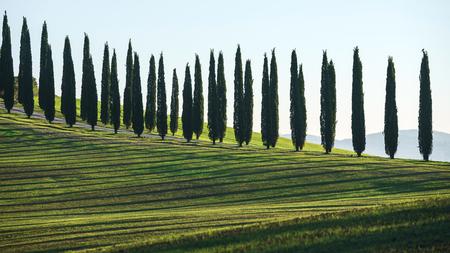Tuscany landscape Stok Fotoğraf