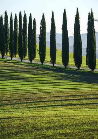Tuscany landscape Stock fotó