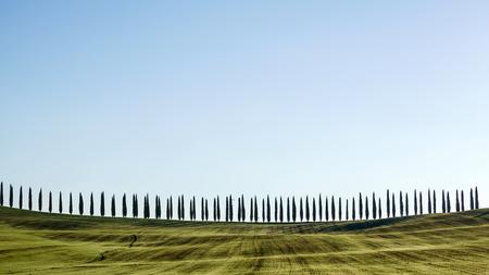 Tuscany landscape 版權商用圖片 - 83258876