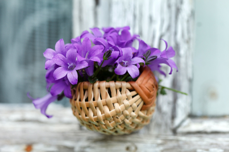 nice flowers in the basket