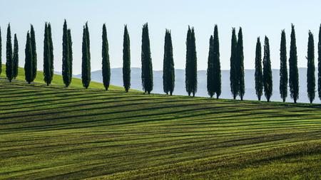 Tuscany landscape 版權商用圖片 - 83986227