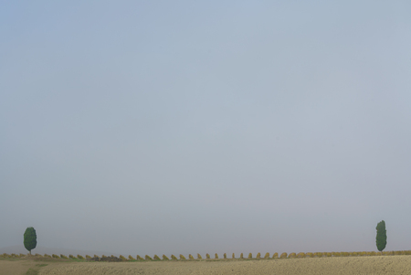 Typical Italian landscape Stok Fotoğraf