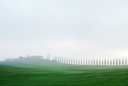 Typical Italian landscape in Tuscany Stok Fotoğraf