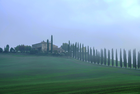 Typical Italian landscape in Tuscany Editöryel