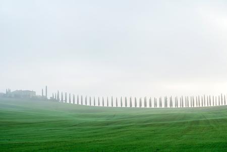 Typical Italian landscape in Tuscany Stok Fotoğraf