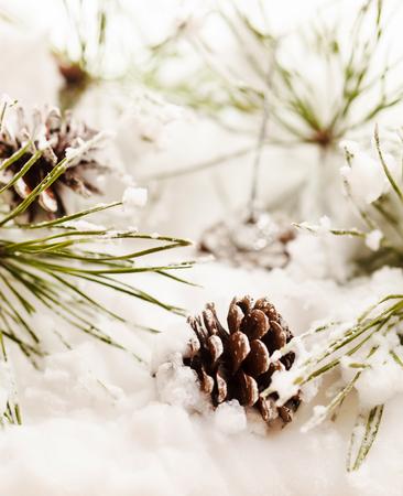 kerstboom Stockfoto