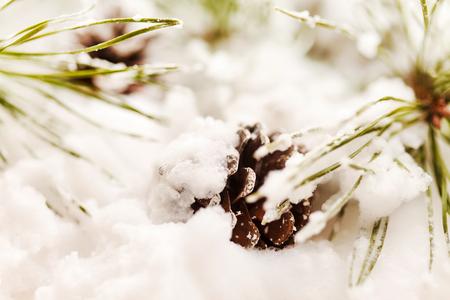 Kerstboom met kegel in sneeuw