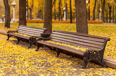 empty bench in park Фото со стока