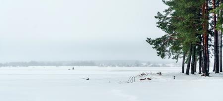 겨울 숲 스톡 콘텐츠 - 88445068