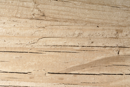 Fondo de madera Foto de archivo - 88703859