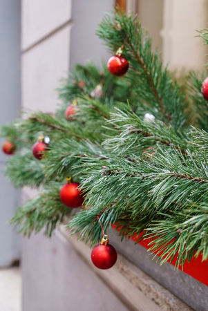 pine branches with red Christmas balls