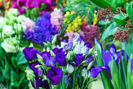 mooie lentebloemen