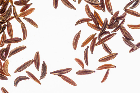 caraway seeds isolated